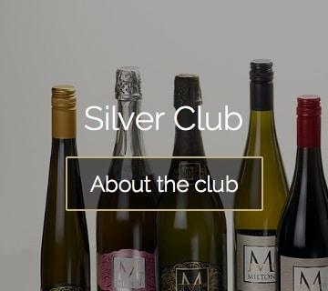 Silver club 360x320